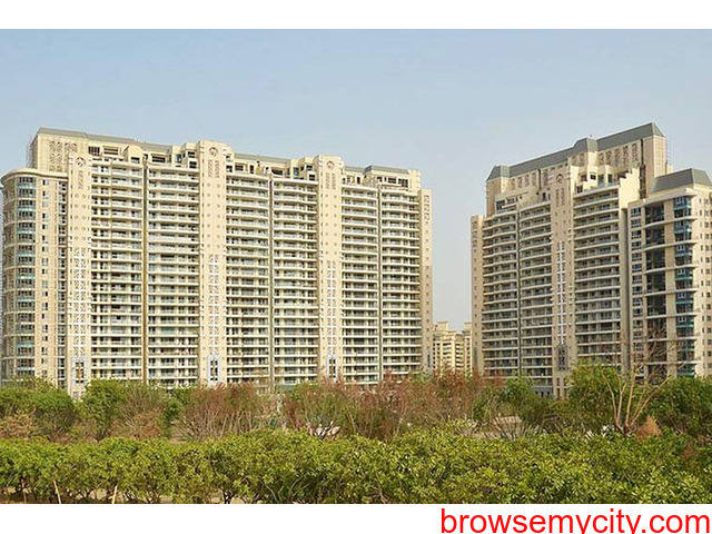DLF The Magnolias for Rent on Golf Course Road Gurugram - 1/2