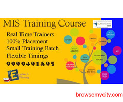 MIS Course/Coaching in Delhi, Burari