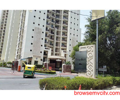 3 BHK Apartments For Rent in Gurgaon - DLF The Summit For Rent on Golf Course Road