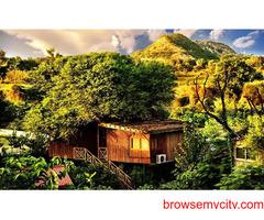 Corporate Offsite Locations near Delhi | Tree House Resort Jaipur