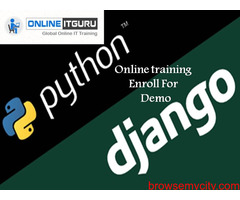 Python online Training 20% off