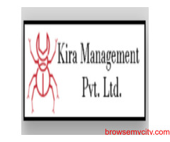 Best ant control treatment services in Jaipur, Rajasthan