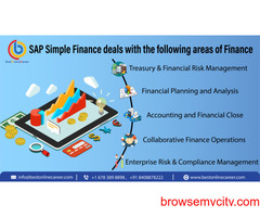SAP S/4HANA Simple Finance Online Training | Best Online career
