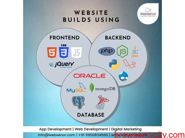 Web Designing Services - Websenor Infotech - 2/3