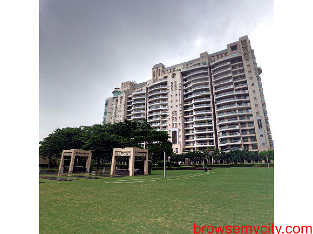 Apartments For Rent on Golf Course Road | DLF The Aralias Gurugram - 1/1