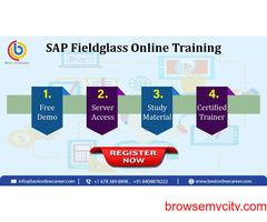 sap fieldglass online training course | Best Online Career.
