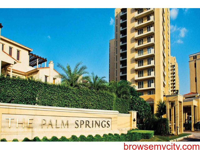 3 BHK Apartments For Rent in Gurgaon | Emaar The Palm Springs on Golf Course Road - 1/1