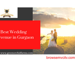 One of the best resort in Gurgaon for wedding-Green Orchid Farms