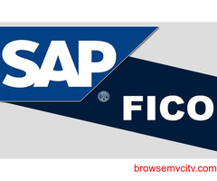 SAP FICO Training in Noida, Sector 2