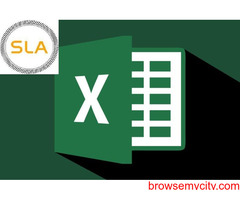 Best MIS Excel Data Analytics Training Institute in Noida