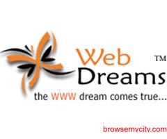 Professional Web development company in India