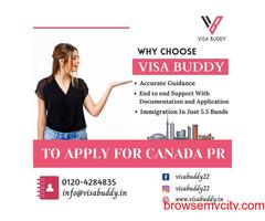 Best Visa Consultants   Visa Buddy