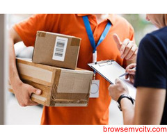 Satisfy customers easily by initiating Courier service app development
