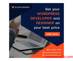 Wordpress web development service provider in ahmedabad