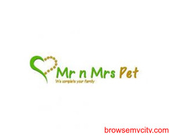 Buy Dogs & Puppy Food Online at Best Prices in India - Mr N Mrs Pet