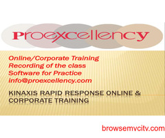 Kinaxis Rapid Response Online Training By Proexcellency