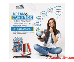 Role of Education Overseas Consultancy in the Process of Studying Abroad