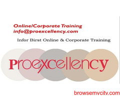 Infor Birst Online Training By Proexcellency