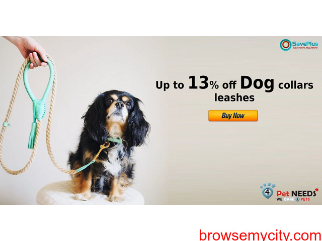 4PetNeeds Coupons, Deals : Up to 13% off dog collars leashes - 1/1