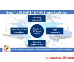 SAP Simple Logistics | SAP Simple logistics online training