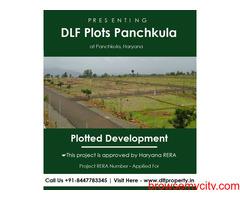 DLF Plots in Panchkula | Breathtaking In Every Glimpse