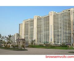 apartments in gurugram, apartments in gurugram for rent