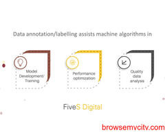 FiveS Digital gives Data Annotation service to your bussiness need