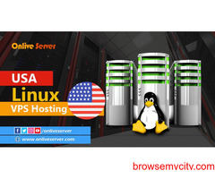 Grow Your Business With Cheap Linux USA VPS Hosting by Onlive Server
