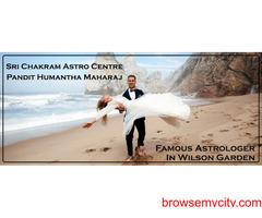 Best Astrologer in Wilson Garden | Famous Astrologer in Wilson Garden