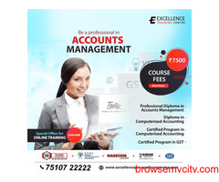 Accounts Management At Excellence