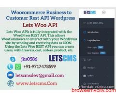 Business to Customer Rest API for Woocommerce | WordPress B2C Rest API Plugin