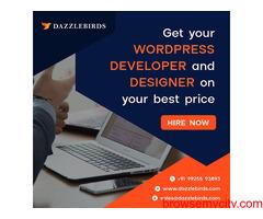 DAZZLEBIRDS:- All in one web and app Development services