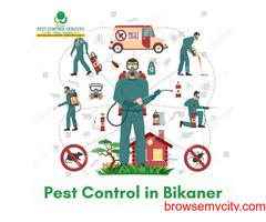 Pest Control in Bikaner