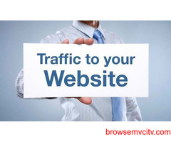Buy paid website traffic to get targeted audience