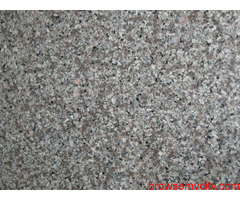 One of the best Suppliers of Indian Black Granite in India…!!!
