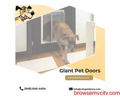 Cat pet doors