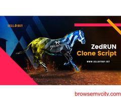 Zed Run Clone Script - To Build A NFT Horse Racing Game
