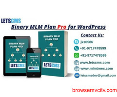 Binary Multi Level Marketing Plan pro for WordPress | eCommerce Business Plugin Software