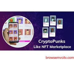 Cryptopunks Clone - Let The Millennials Go Craze With Our NFT Marketplace