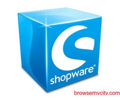 Shopware developers   Shopware Theme Design & Development Company