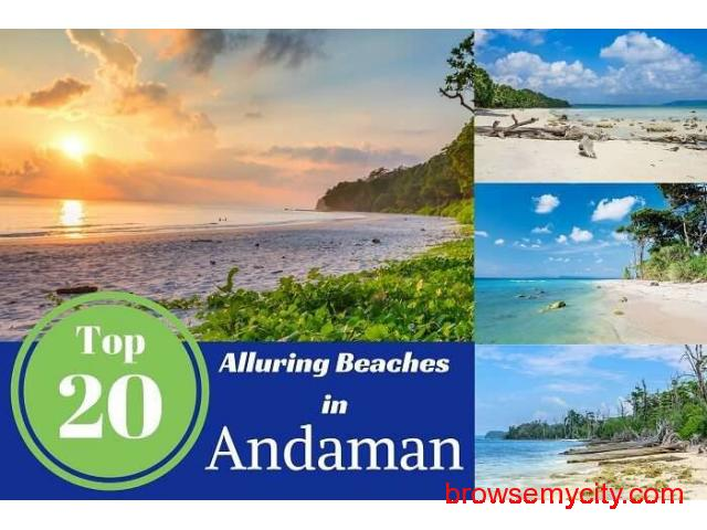 andaman travel package - 3/4