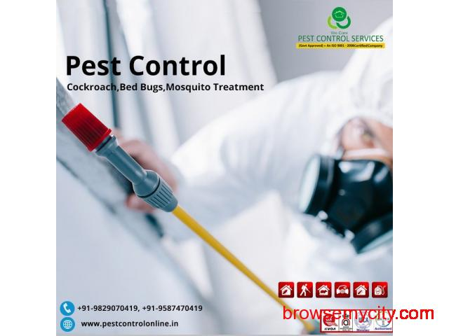 Top Pest Control Services In Rajasthan - 1/1