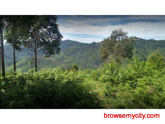 DTCP approved Residential Plots for sale at Kodaikanal - 1/6