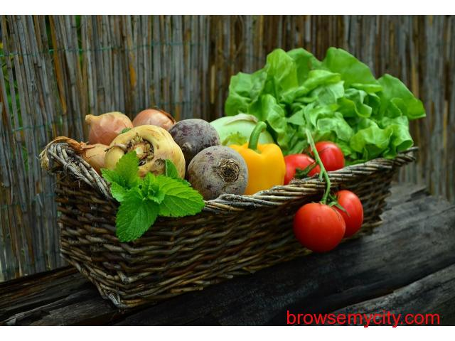 Why Organic Baby Food. - 1/1