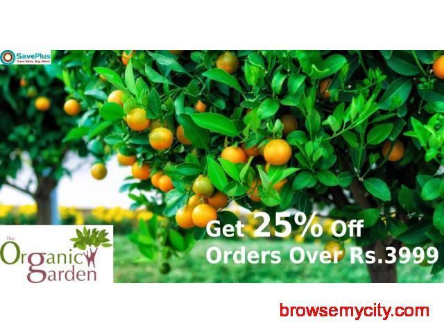 Get 25% Off Orders Over Rs.3999 - 1/1