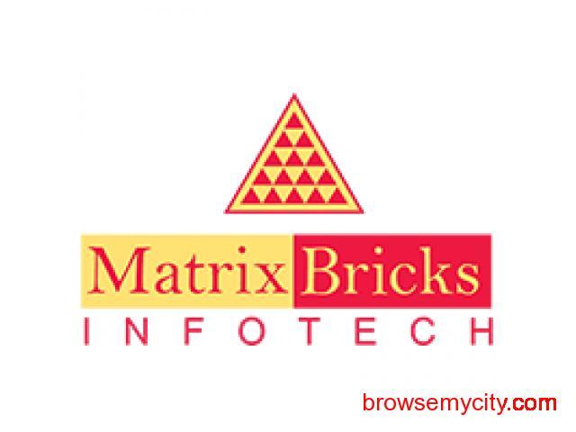 Best E-Commerce Website Development Company by Matrix Bricks - 1/1
