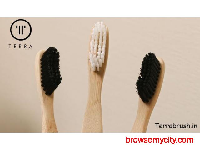 Where to Buy Bamboo Toothbrush Online - 1/1