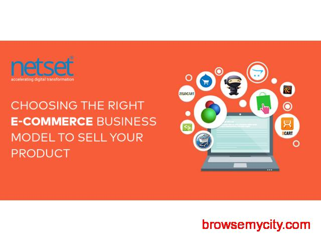 Best ecommerce Developers India - Netset Software Solutions - 1/1