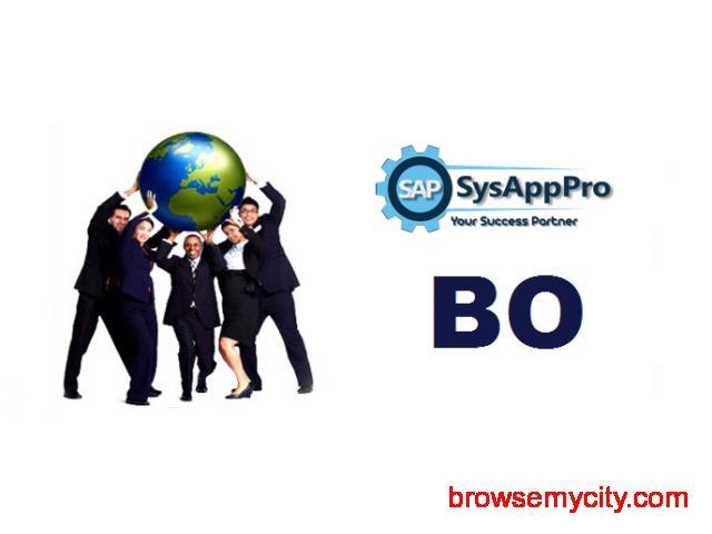 SAP BO Course in Noida - 1/1